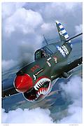 P-40, aerial close up
