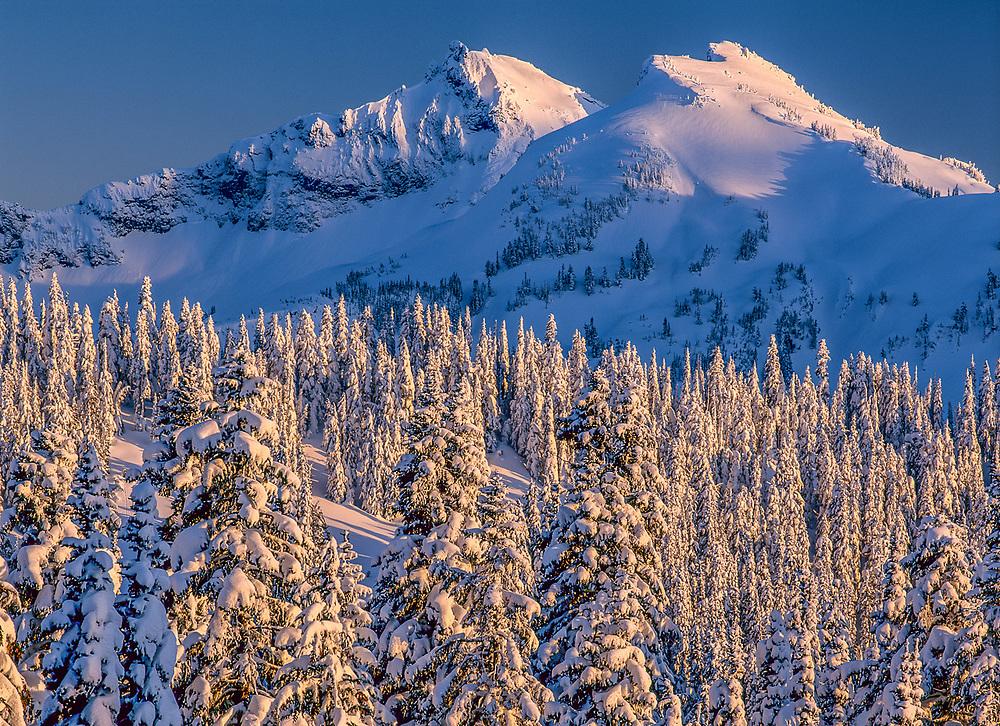 Tatoosh Range, evening light, view from Paradise, winter, Mount Rainier National Park, Washington, USA