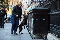 © Licensed to London News Pictures. 09/11/2016. London, UK. Sniffer dogs check an area around Whitehall, which has been closed, possibly due to a suspicious van. Photo credit : Tom Nicholson/LNP