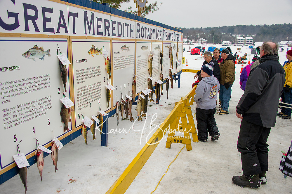 """Some sizable fish adorned the """"wall"""" on Saturday afternoon during the Great Meredith Rotary Ice Fishing Derby.  (Karen Bobotas/for the Laconia Daily Sun)"""
