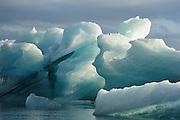 Two birds on top of the icebergs at Jökulsárlón glacier lagoon, Iceland