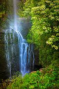 Waterfall along the road to Hana on Maui's north coast