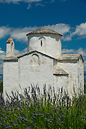 The tiny Church of the Holy Cross (Sv Križ), dating from the 9th century, surrounded by lavender. Nin, near Zadar, Croatia © Rudolf Abraham
