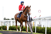 Veleta ridden by Liam Keniry and trained by Clive Cox - Mandatory by-line: Robbie Stephenson/JMP - 18/07/2020 - HORSE RACING- Bath Racecourse - Bath, England - Bath Races 18/07/20