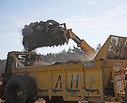 Tractor loading animal dung onto a trailer, Butley, Suffolk, England