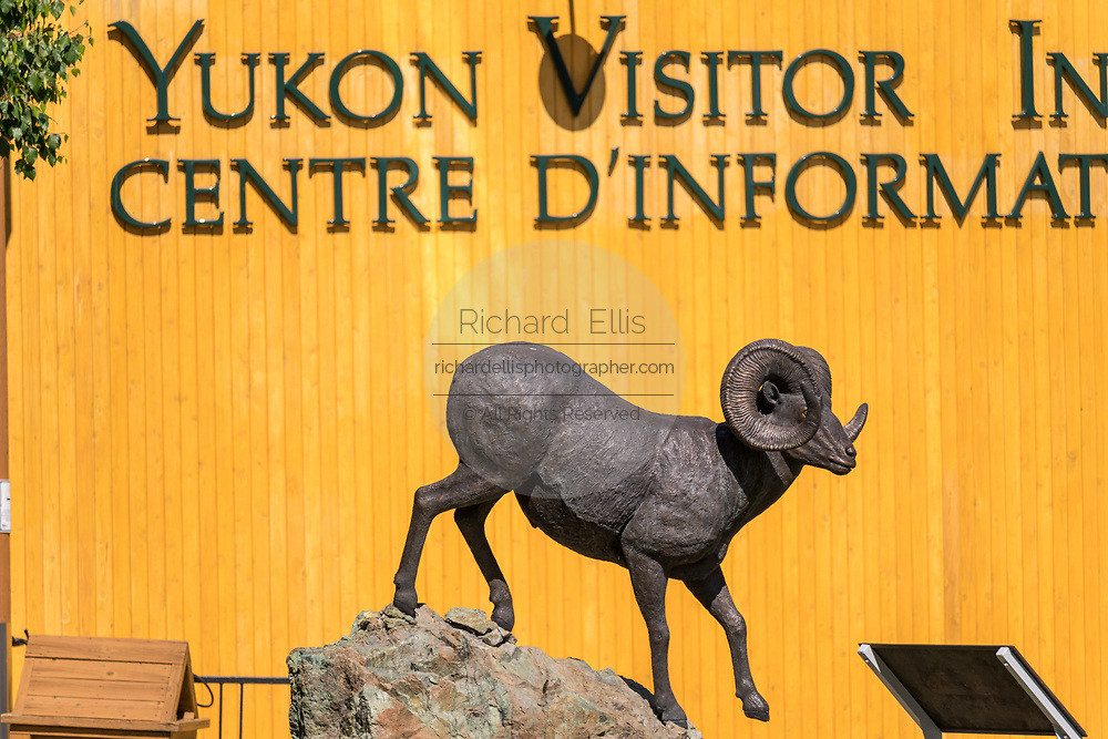 The Yukon Visitor Information Center with a statue of bighorn sheep in Whitehorse, Yukon, Canada.