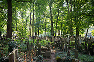 A view on a summer day of the New Jewish Cemetery in Kraków, Poland. The cemetery was founded in 1800 and is located in the historic Jewish neighborhood of Kazimierz. During World War II the Nazis sold or otherwise used the Jewish tombstones for other purposes. Following the war many tombstones were recovered and the cemetery renovated.