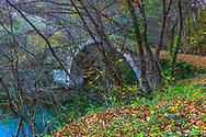 Stone bridge above a green river