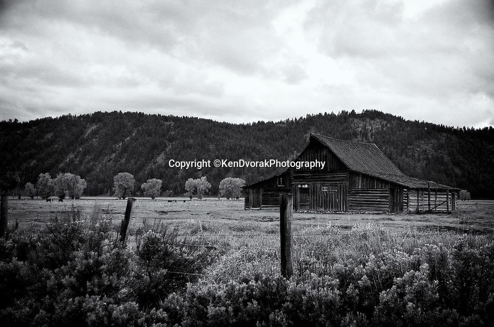 Teton/Yellowstone '13<br /> edited 9/13/13<br /> converted to B&W 9/13/13