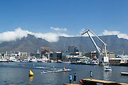 The mens elite race swim during the Discovery Triathlon World Cup Cape Town 2017. Image by Greg Beadle