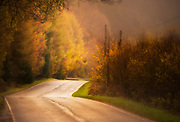 A road through the Scottish Higlands framed by autumn coloured trees.