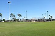 Softball Fields 3 and 4 at Bill Barber Park