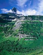 Summer Green and Reynolds Mountain, Glacier National Park, Montana
