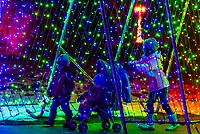 A tunnel of lights, A Hudson Christmas (holiday light show at Hudson Gardens), Littleton, Colorado USA.