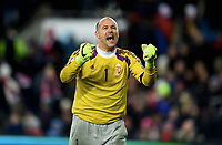 Fotball , 12. november 2014 ,<br /> Play-off , Norge - Ungarn<br /> EURO 2016 - Qualification: play-off<br /> Norway - Hungary 0-1<br /> Gabor Kiraly , Ungarn jubel