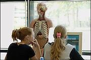 Nederland, Nijmegen, 9-6-2005..Studenten lerarenopleiding aan de hogeschool arnhem nijmegen, HAN, bezig met biologie. Onderwijs, leraar, lerarentekort. Anatomie menselijk lichaam...Foto: Flip Franssen