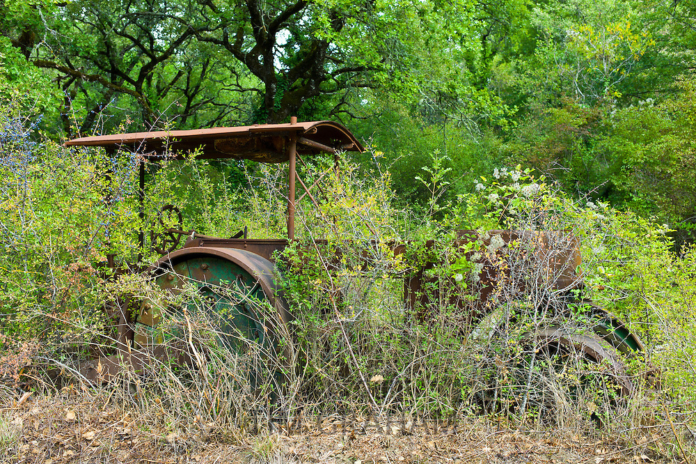 Ancient rusty steamroller near Lucarelli Tuscany, Italy RESERVED USE - NOT FOR DOWNLOAD - FOR USE CONTACT TIM GRAHAM