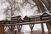 Snow-covered birdhouses in Taos County