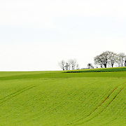 French countrside near Sancerre, Loire Valley, France