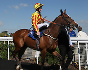 Jockey Pat Cosgrave on Red Perdita in the Parade Ring before the 4.20 race at Brighton Racecourse, Brighton & Hove, United Kingdom on 10 June 2015. Photo by Bennett Dean.