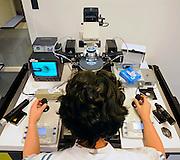 Nederland, Nijmegen, 6-1-2009Schaaltje onder een microscoop waar een eicel gefixeerd wordt om daarna door de laborant kunstmatig bevrucht te worden. In vitro fertilisatie.Foto: Flip Franssen