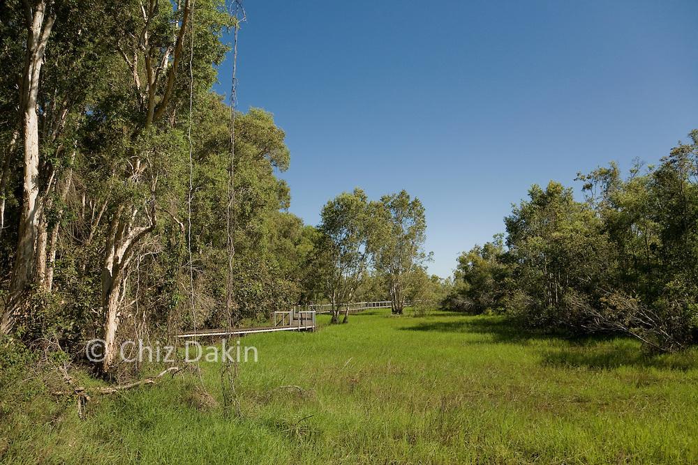 Boardwalk along the wetlands, Fogg Dam Conservation Reserve, nr Darwin, NT, Australia