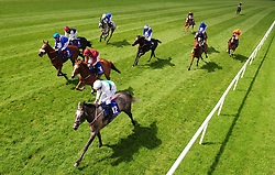 Who's Steph ridden by Colin Keane wins the Derrinstown Stud 1,000 Guineas Trial during Derrinstown Stud Derby Trial Day at Leopardstown Racecourse, Dublin.