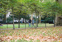 October 8, 2018 - London, London, United Kingdom - UK Weather - London Park Covered In Autumn Leaves. ..Russell Square park covered in autumn leaves. (Credit Image: © Dinendra Haria/i-Images via ZUMA Press)