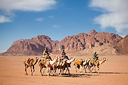 Bedouin men ride racing camels through the desert in Wadi Rum, Jordan.