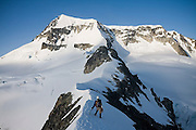 Climber Jim Prager ascend the NE Arete of Wedge Mountain in Garibaldi Provincial Park, British Columbia, Canada on June 14, 2009. Wedge (2892 m) is the highest summit in the park.