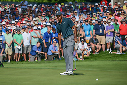 August 9, 2018 - Town And Country, Missouri, U.S - TIGER WOODS from Jupiter Florida, USA  and the crowd watch his putt close in on the cup on the 14th hole during round one of the 100th PGA Championship on Thursday, August 8, 2018, held at Bellerive Country Club in Town and Country, MO (Photo credit Richard Ulreich / ZUMA Press) (Credit Image: © Richard Ulreich via ZUMA Wire)