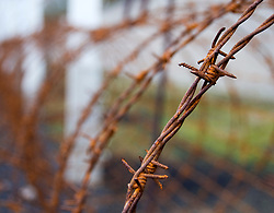 Detail of barbed wire from security perimeter fence at Sachsenhausen concentration camp near Berlin Germany 2008