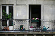 Thursday June 19th 2008. Paris, France.From the window of an apartment.Avenue Carnot - 17th Arrondissement.