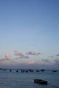 Fortaleza_CE, Brasil...Cotidiano do mercado de peixe de Fortaleza. Na foto detalhe dos peixes...Fish market in Fortaleza. In this photo some fishes...Foto: BRUNO MAGALHAES / NITRO