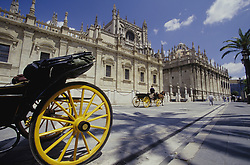 Europe, Spain, Andalucia, Sevilla, horse-drawn carriage and Cathedral