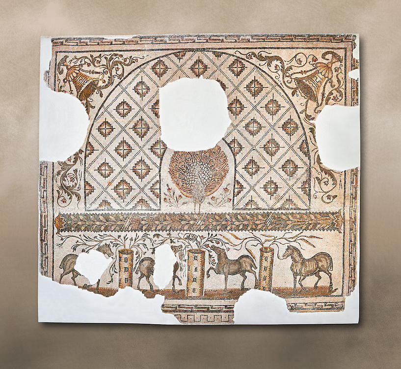 Second half of the 4th century AD Roman mosaic depiction of a Peacock with raised tail feathers, and horses from the four fractions of the circus . From the House of the Peacock, Cathage, Tunisia.  The Bardo Museum, Tunis, Tunisia..<br /> <br /> If you prefer to buy from our ALAMY PHOTO LIBRARY  Collection visit : https://www.alamy.com/portfolio/paul-williams-funkystock/roman-mosaic.html - Type -   Bardo    - into the LOWER SEARCH WITHIN GALLERY box. Refine search by adding background colour, place, museum etc<br /> <br /> Visit our ROMAN MOSAIC PHOTO COLLECTIONS for more photos to download  as wall art prints https://funkystock.photoshelter.com/gallery-collection/Roman-Mosaics-Art-Pictures-Images/C0000LcfNel7FpLI