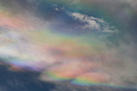 I spotted these vivid iridescent clouds above the sun in Ranchester, Wyoming. The colors were more easily seen with sunglasses since the clouds were bright. It looked like an oil slick in the sky. There were plenty of lenticular clouds around, and it's common for those to show iridescence when they're in the right place.