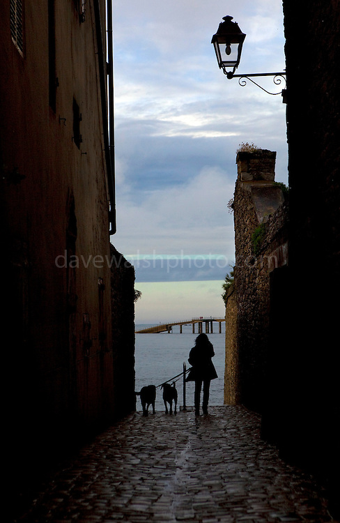 """A woman walks her dogs in a laneway at dusk, in Roscoff, Brittany, France This mage can be licensed via Millennium Images. Contact me for more details, or email mail@milim.com For prints, contact me, or click """"add to cart"""" to some standard print options."""