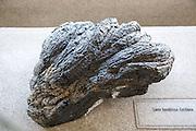 Basaltic lava flow rock sample geology display, Casa de los Volcanes volcanic study centre, Lanzarote, Canary island, Spain