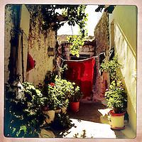 Kreta, Kroustas , 24 juli 2013.<br /> <br /> Een tuintje bij een woning in het bergdorpje Kroustas even ten Zuiden van Kritsa in het Noord Oosten van Kreta.<br /> Summer holiday on the Greek island of Crete. Small courtyard.