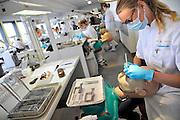 Nederland, Nijmegen, 21-9-2011Opleiding tandheelkunde aan de radboud universiteit, umc, umcn. Deze week wordt het 50 jarig bestaan van de opleiding gevierd.Foto: Flip Franssen