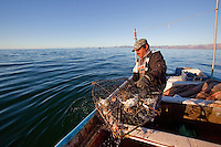 A artisanal crab fisherman hauls his catch out of Kino Bay, Mexico.