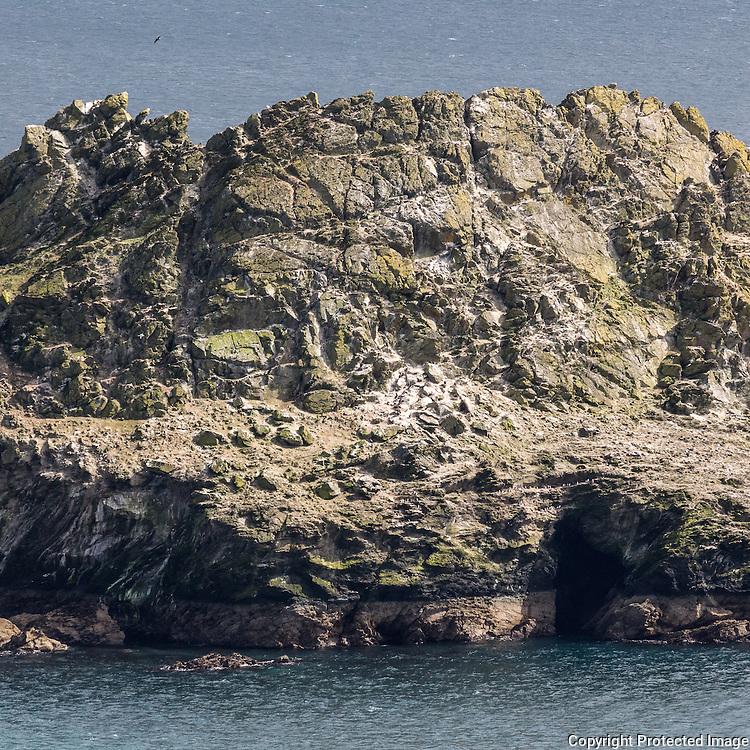 Gull Rock, Veryan, Cornwall.