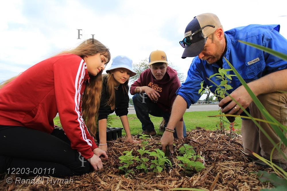 High school environmental sciences teacher Luke Freeman helps his students plant wildflowers in bioswale of rain garden at River Side Park in Au Gres, Michigan.