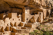 Cliff Palace, the largest cliff dwelling in North America, was built 1190-1260 CE by Ancestral Puebloans on Chapin Mesa in what is now Mesa Verde National Park, in Colorado, Southwestern USA. Cliff Palace was rediscovered in 1888 by Richard Wetherill and Charlie Mason while looking for stray cattle. Mesa Verde National Park is a UNESCO World Heritage Site in Montezuma County. The park was established by Congress and President Theodore Roosevelt in 1906 near the Four Corners region. Starting around 7500 BCE, Mesa Verde was seasonally inhabited by nomadic Paleo-Indians. Later, Archaic people established semi-permanent rockshelters in and around the mesa. By 1000 BCE, the Basketmaker culture emerged from the local Archaic population, and by 750 CE the Ancestral Puebloans had developed from the Basketmaker culture. The Mesa Verdeans survived using a combination of hunting, gathering, and subsistence farming of crops such as corn, beans, and squash. They built the mesa's first pueblos sometime after 650, and by the end of the 1100s began building massive cliff dwellings. By 1285, following a period of social and environmental instability driven by a series of severe and prolonged droughts, they abandoned the area and moved south into what is today Arizona and New Mexico.