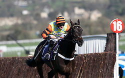 Might Bite ridden by Nico de Boinville wins the RSA Novices' Chase during Ladies Day of the 2017 Cheltenham Festival at Cheltenham Racecourse