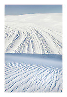 Gypsum sand dunes, White Sands National Monument New Mexico