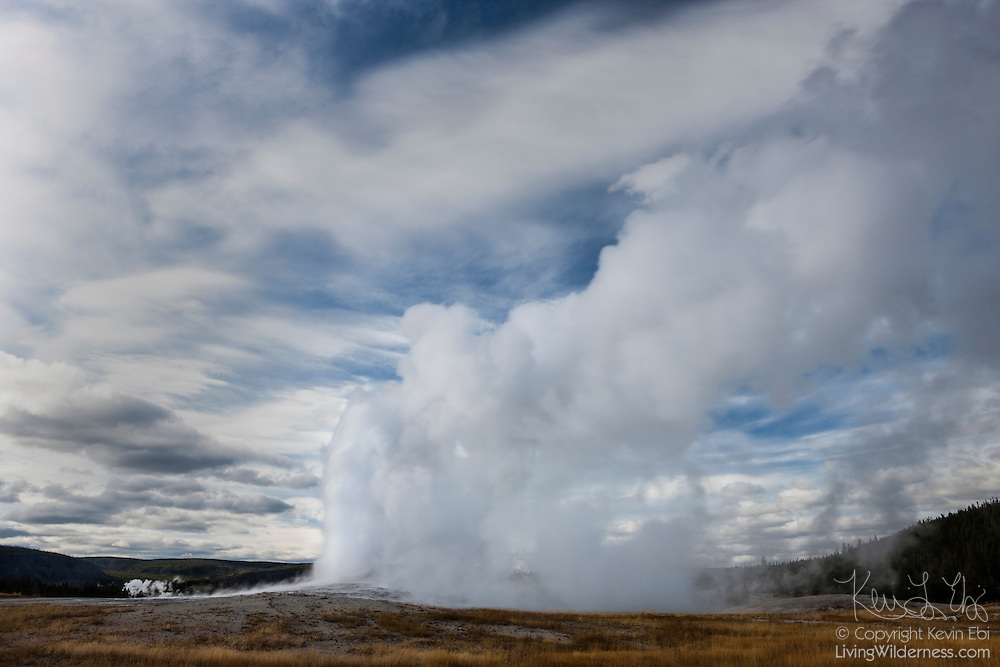 Old Faithful, the most famous geyser in Yellowstone National Park, Wyoming, erupts, sending a cloud of steam into the air that somewhat mimics the clouds in the sky. The geyser's eruptions are not as predictable as the name Old Faithful might suggest. Eruptions can occur as little as 45 minutes apart or with a gap as long as 125 minutes. The geyser's height also varies; at times the column of water can reach 184 feet (56 meters) high.