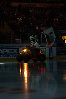 KELOWNA, CANADA - OCTOBER 23:  Rocky Raccoon, the mascot of the Kelowna Rockets enters the ice against the Swift Current Broncos on October 23, 2018 at Prospera Place in Kelowna, British Columbia, Canada.  (Photo by Marissa Baecker/Shoot the Breeze)