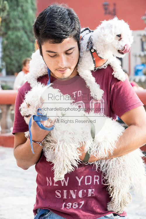 A man carries his pet dogs as he waits for the start of the annual blessing of the animals on the feast day of San Antonio Abad at Oratorio de San Felipe Neri church January 17, 2020 in the historic center of San Miguel de Allende, Guanajuato, Mexico.